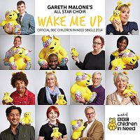 Gareth Malone's All Star Choir - Wake Me Up (Children in Need 2014) cover