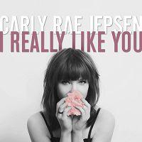 Carly Rae Jepsen - I Really Like You cover