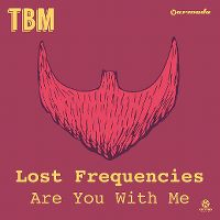 Lost Frequencies - Are You With Me? cover
