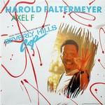 Harold Faltermeyer - Axel F cover