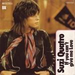 Suzi Quatro - If you can't give me love (single version) cover