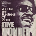 Stevie Wonder - You Are The Sunshine Of My Life (instr. SG sound) cover
