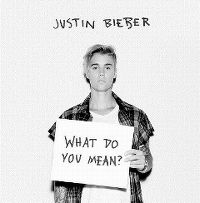 Justin Bieber - What Do You Mean? cover