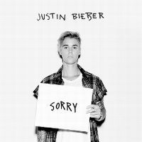 Justin Bieber - Sorry cover