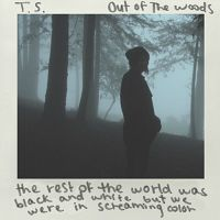 Taylor Swift - Out of the Woods cover