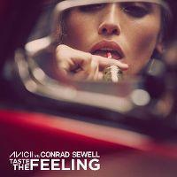 Avicii vs Conrad Sewell - Taste The Feeling cover