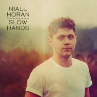 Niall Horan - Slow Hands cover