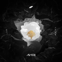 Avicii ft. Rita Ora - Lonely Together cover