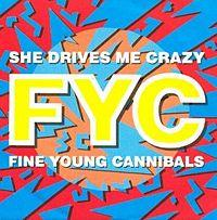 Fine Young Cannibals - She Drives Me Crazy cover
