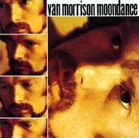 Van Morrison - Moondance cover