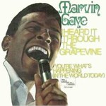 Marvin Gaye - I Heard It Through The Grapevine cover