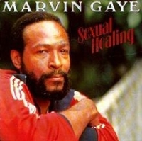Marvin Gaye - Sexual Healing cover