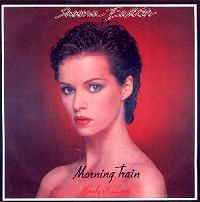 Sheena Easton - 9 to 5 (Morning Train) cover