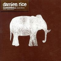 Damien Rice - Cannonball cover