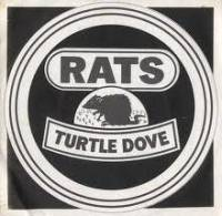 The Rats - Turtle Dove cover