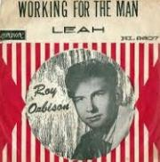 Roy Orbison - Working For the Man cover