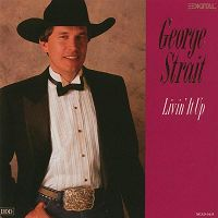 George Strait - We're Supposed To Do That Now and Then cover