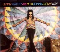 Lenny Kravitz - Are You Gonna Go My Way? cover